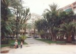 Elche by